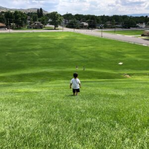 Small child overlooking a field of lush green grass